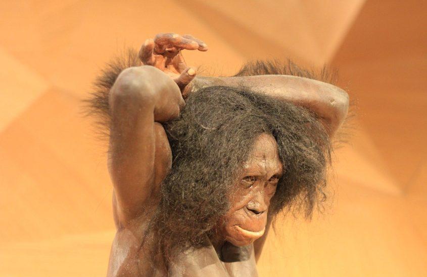 covid 19 : c'est la faute à Neandertal !